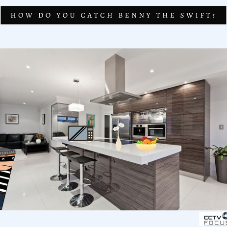 Do you Want to Catch Benny the Swift?