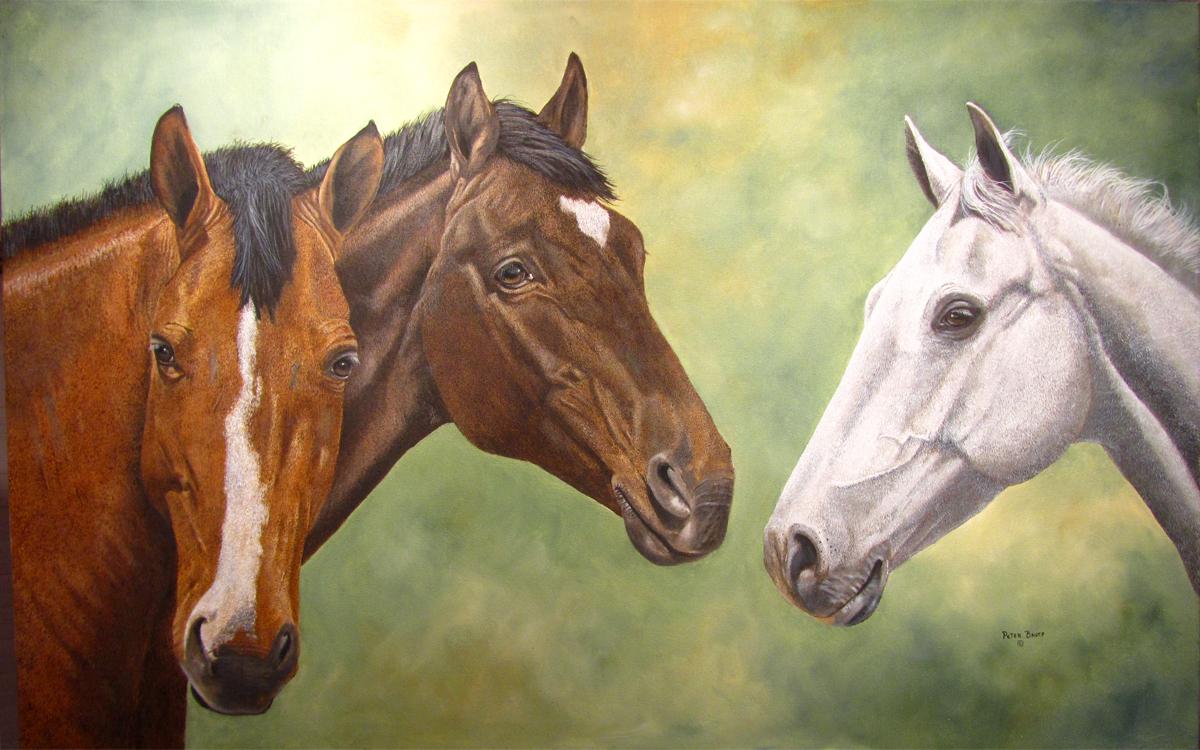 Horses & Texas