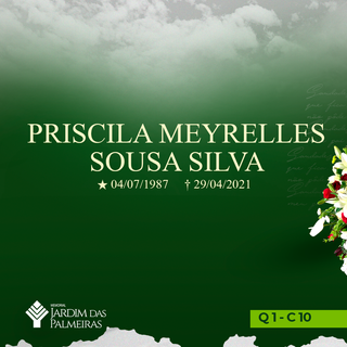 Priscila Meyrelles Sousa Silva