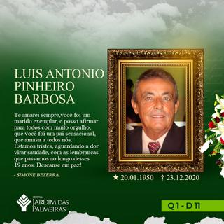 Luis Antonio Pinheiro Barbosa