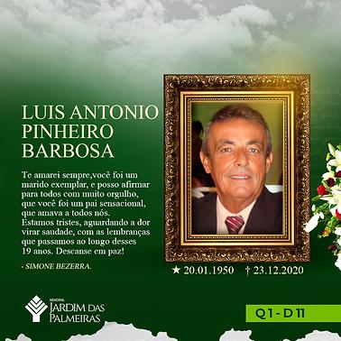 Luis Antonio Pinheiro Barbosa.png