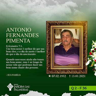 Antonio Fernandes Pimenta.png