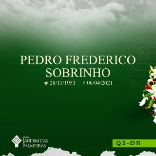Pedro Frederico Sobrinho