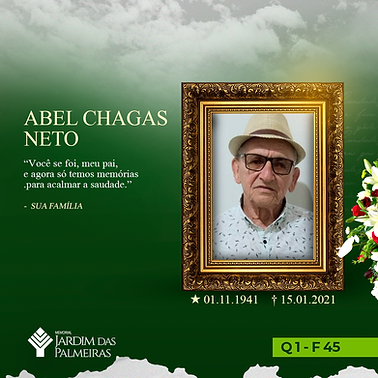 Abel Chagas Neto.png
