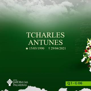 Tcharles Antunes