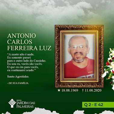 Antonio Carlos Ferreira Luz.png