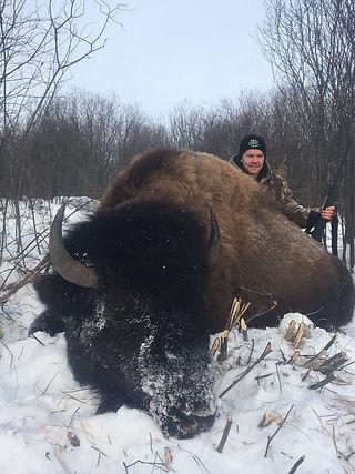 buffalo3_edited.jpg