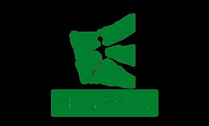 hsgfocus.png