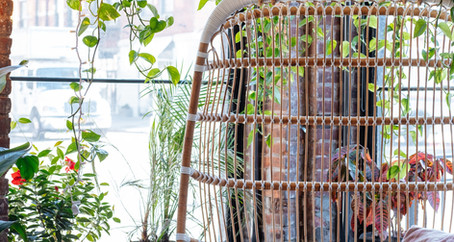 Biophilic Design in Working Environments
