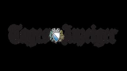 tagesanzeiger-logo.png