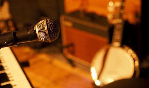 FHL Wallers Microphone.jpg