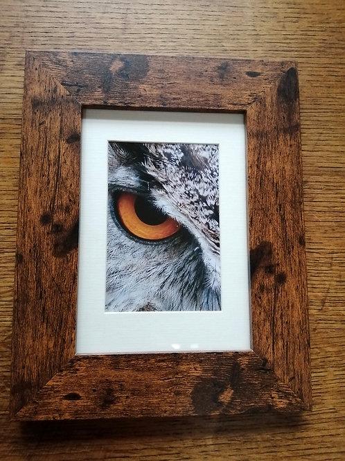 Rosie Owl Wisdom - Mounted Frame 2