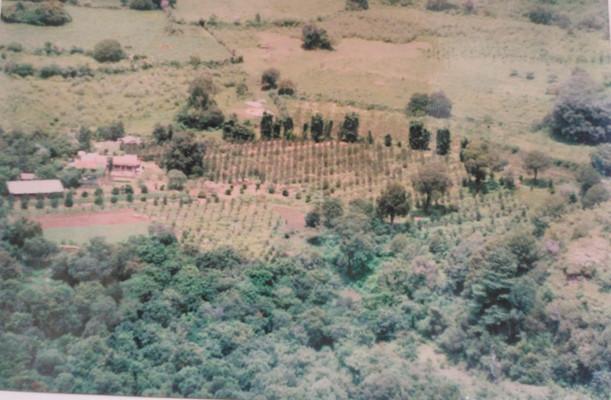Primeros años del Rancho con siembra de manzanos y casa