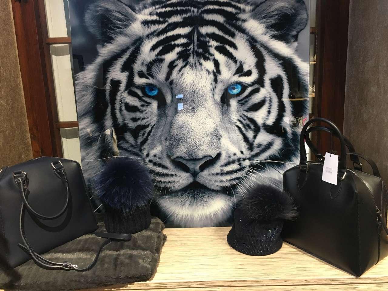 Laden innen 5 Tiger