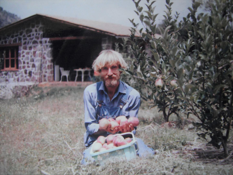 La primera cosecha de manzanas