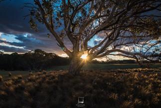 Australia-5.jpg