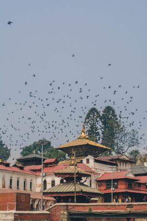 Nepal 2016-26.jpg
