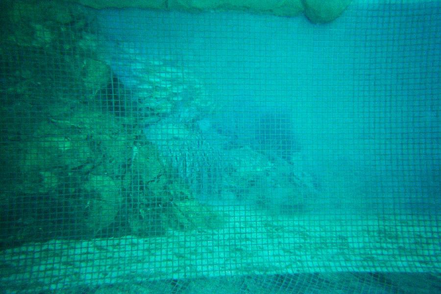 pools01-07