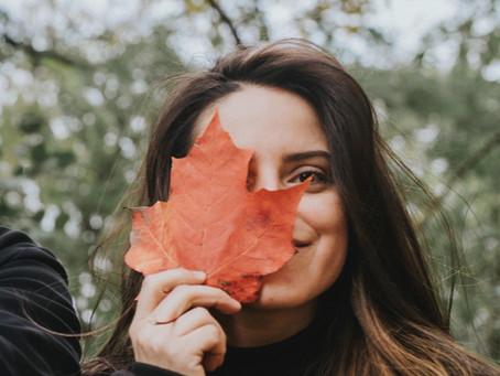 Actividades para realizar durante otoño en la provincia de Quebec