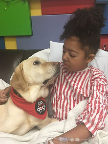 therapy dog at CHEO.jpg
