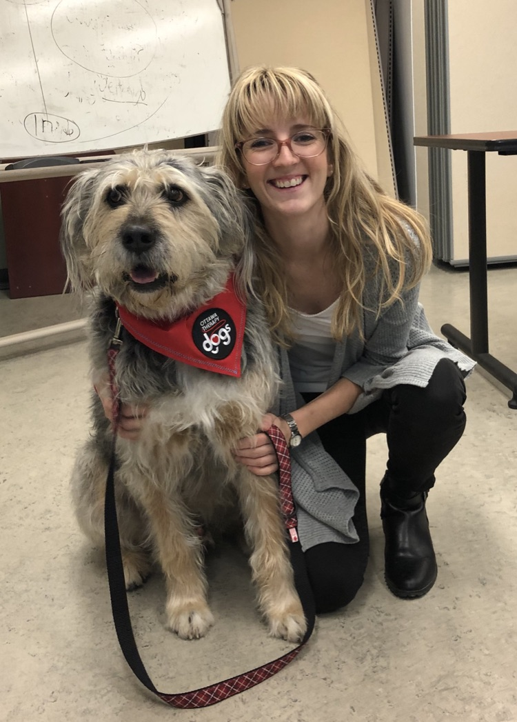 Siobhan & Barkley (Irish Wolfhound X)