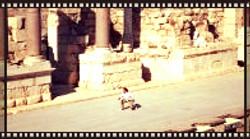Ancient Theater - Biet Shean, Israel