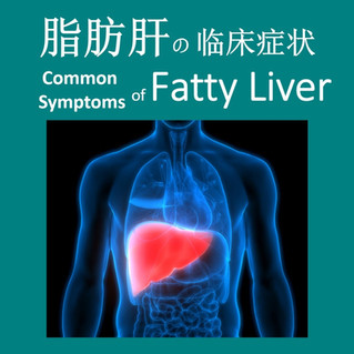 脂肪肝 Fatty Liver Disease