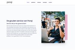 Seo website teksten Ponqi