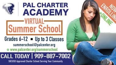 Virtual Summer School! Now Enrolling!