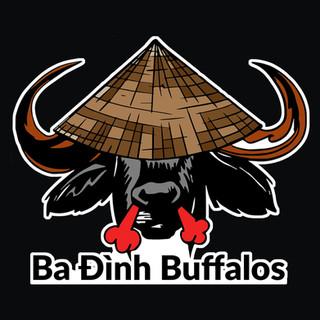 Ba Dinh Buffalos Logo