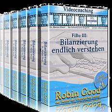 gepruefter-immobilienfachwirt-ihk-finanzbuchhaltung-fibu-bilanzierung_edited.png