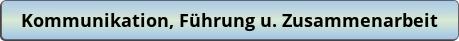 button_kommunikation-fuhrung-u-zusammenarbeit.png