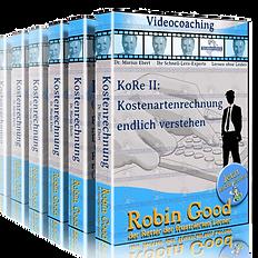 gepruefter-immobilienfachwirt-ihk-kostenrechnung-kostenartenrechnung_edited.png