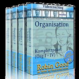 bwl-videocoaching-organisation_edited.pn