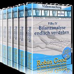 gepruefter-immobilienfachwirt-ihk-finanzbuchhaltung-fibu-bilanzanalyse_edited.png
