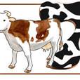 spasslerndenk-buch-illustration-21.jpg
