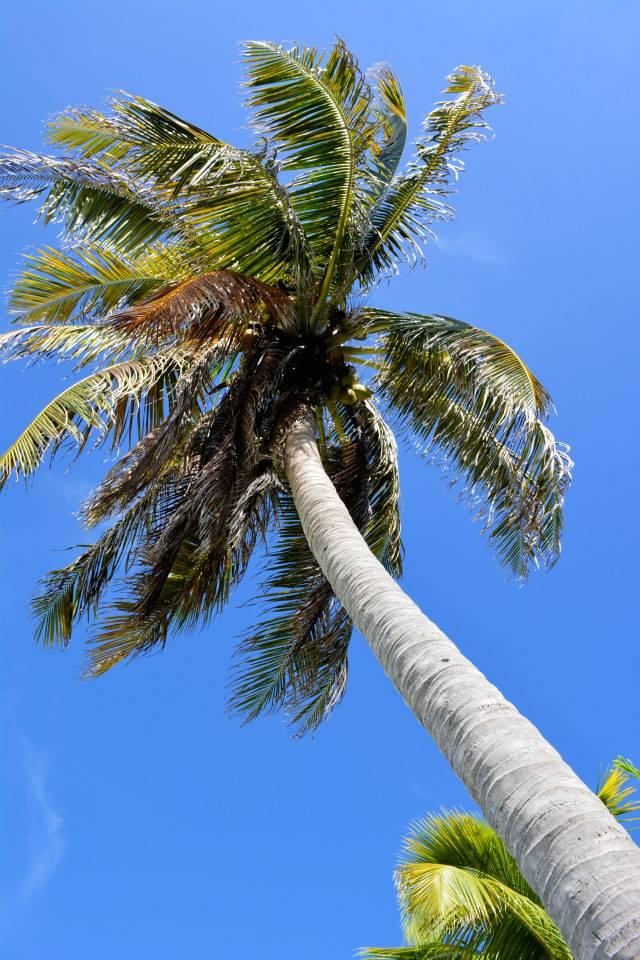 Playa Paraiso 3