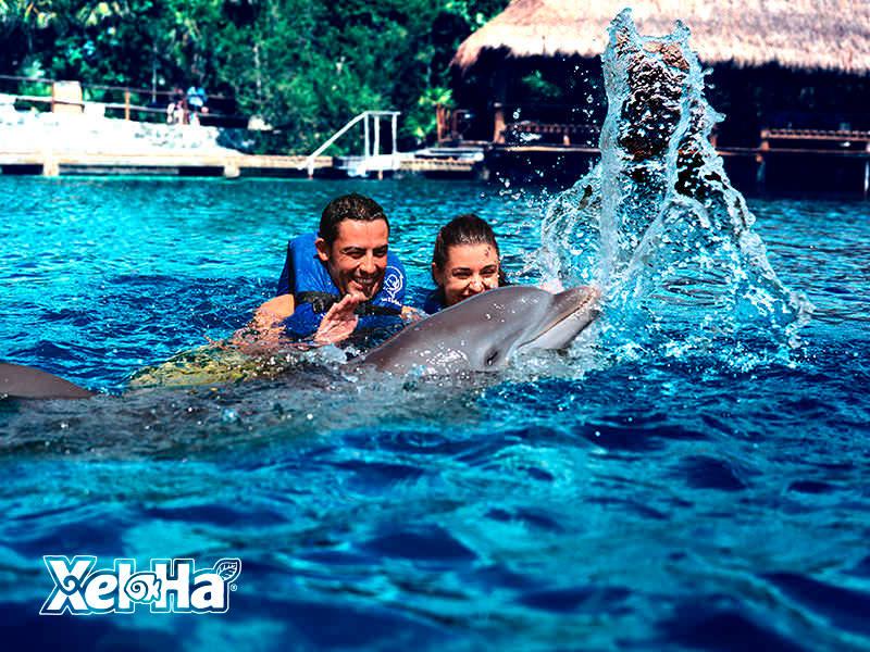 delfines-interax-3