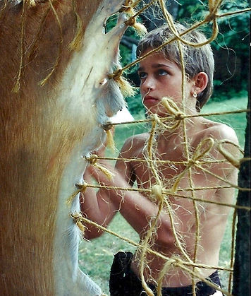 A boy tans a deerhide using traditional methods