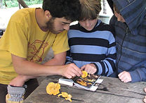 A camp counselor and two campers identifying plants