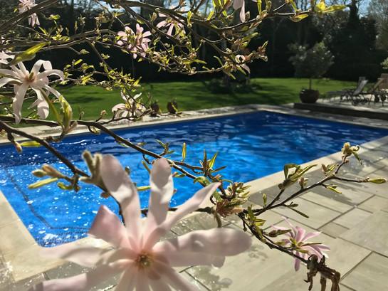 Spring Swimming Pool