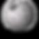 wiki log.png