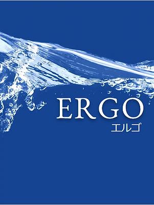 エルゴ.png