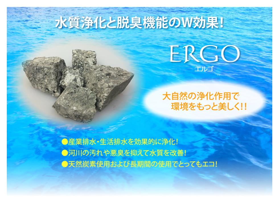 エルゴ1-1.png