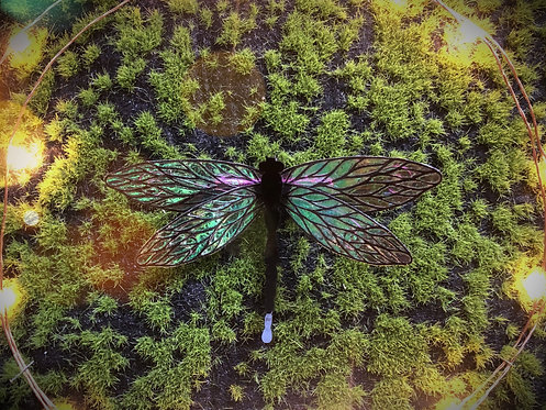 Peacock Dragonfly Hairclip