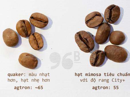 [COFFEE TIP] Hạt quaker và chất lượng cà phê