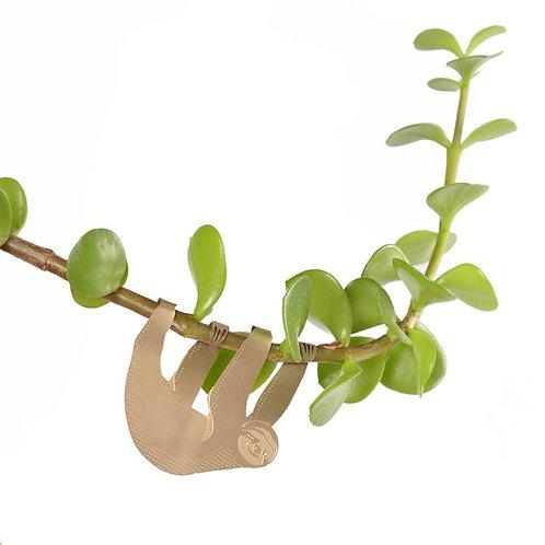 Plant Animals - Sloth