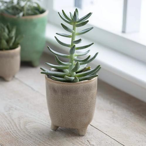 Crackle Glaze Pot in Stone - Medium