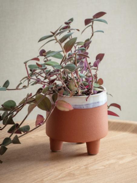Terracotta Dip Pot - Small
