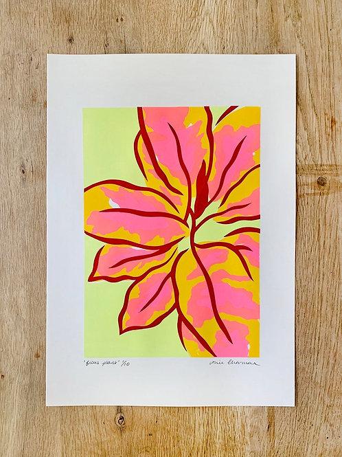 'Ficus' A3 Screenprint by Alice Charman Prints